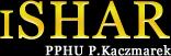 Ishar.pl - strona firmy Logo